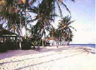 Pelican Cove Beach St. Croix