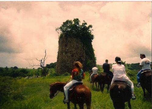 St Croix Horseback Riding